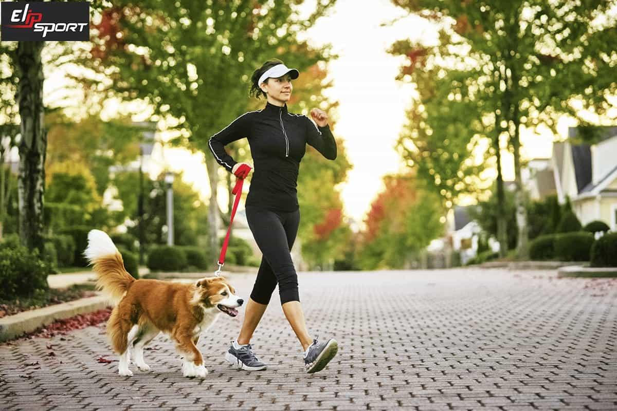 Đi bộ phát triển các cơ rút chậm nhưng không làm to cơ